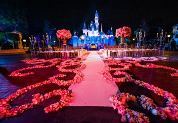 Disney Proposal Ideas That Make Dreams Come True - weeding, proposal, disney
