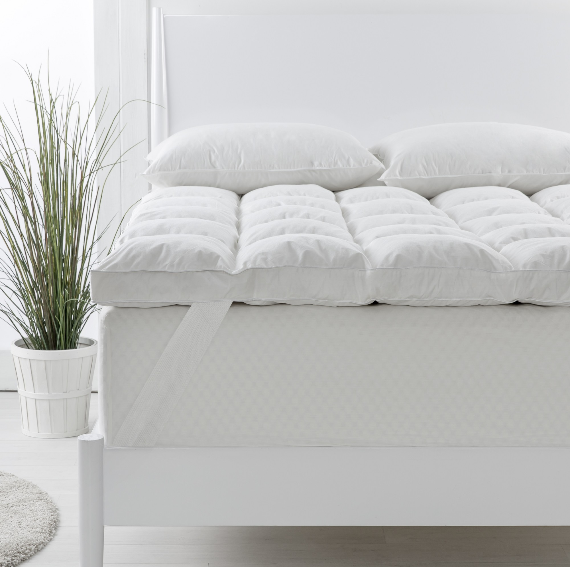 Signs To Look For When Buying An All Organic Mattress