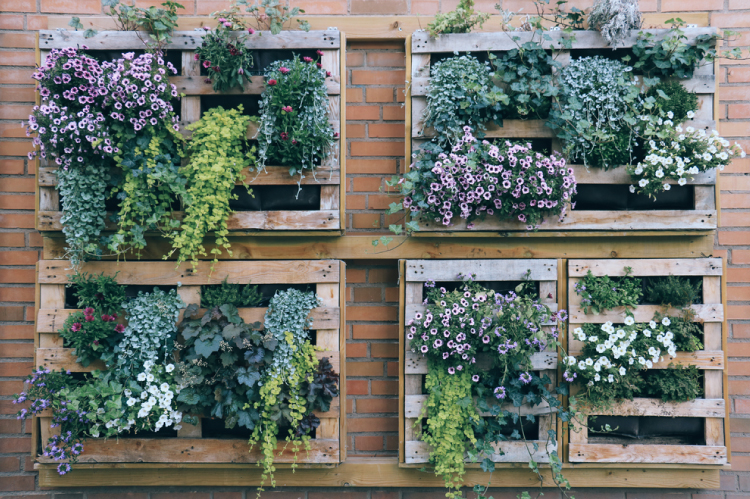 12 Genius Diy Vertical Gardening Ideas For Small Spaces Style