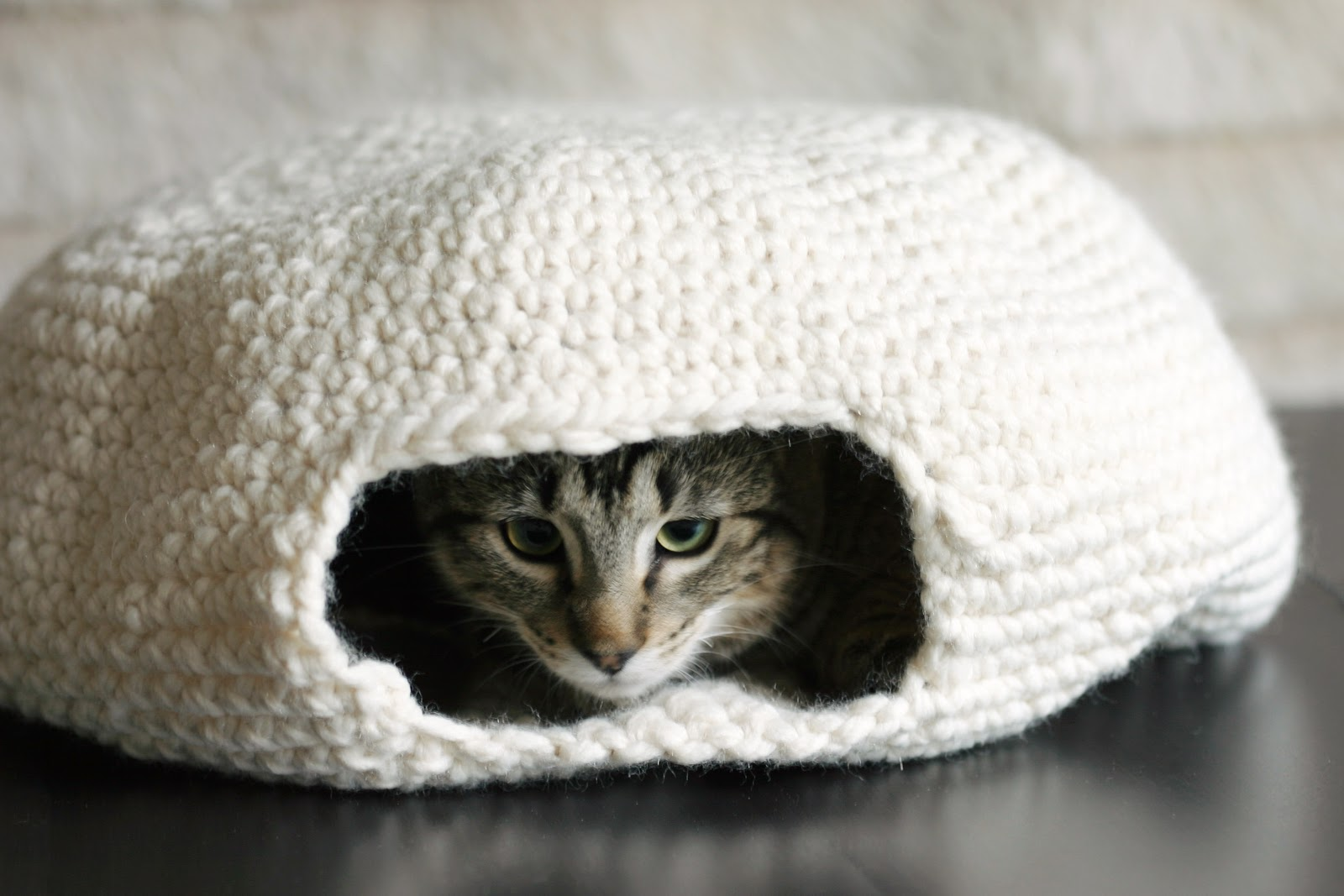 14 Knit And Crochet Projects For Your Cat Style Motivation