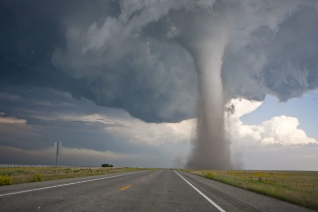How to Survive a Tornado without Losing Your Shirt or Your Life