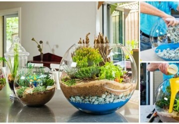 14  DIY Terrarium Ideas You Can Make Today - how to make terrarium, DIY Terrarium Ideas, DIY Terrarium Idea, diy terrarium