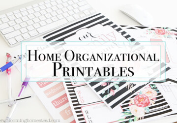 15 Free Printables to Organize Everything - Printables to Organize Everything, printables, free printables, DIY Organization Ideas, diy organization hacks