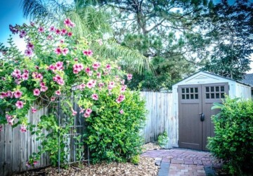 What To Consider Before Buying Your New Backyard Shed - yard, windows, Storage, size, shed, outdoors, organized, material, garden, garage, doors