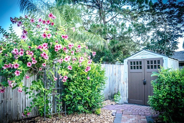 What To Consider Before Buying Your New Backyard Shed