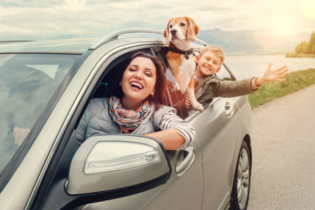 How to Fit Everything You Need for Your Next Family Road Trip