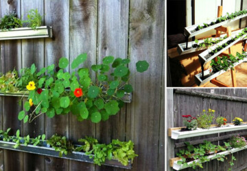 How to Make a Rain Gutter Garden - soil, rain gutter garden, outdoors, gardening, garden