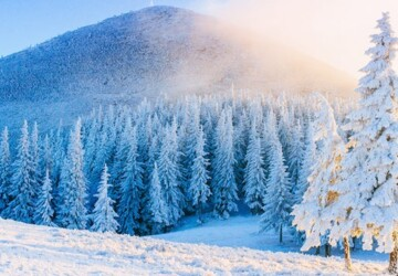 Best Winter Holiday Locations for a Student - winter, students, snow, locations, holiday