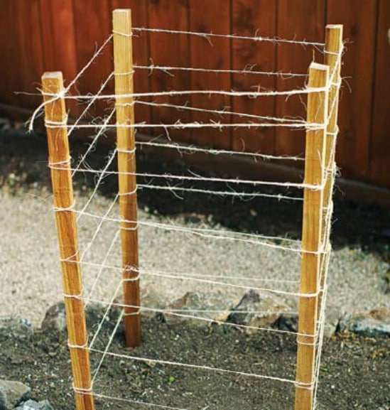 Easy DIY Stake And Twine Plant Cage