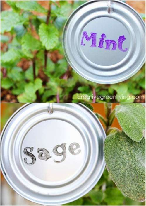 15 Creative DIY Plant Labels and Markers for Your Garden