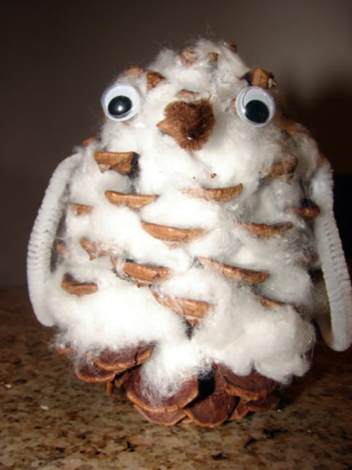 Snowy Owl Pinecone Craft