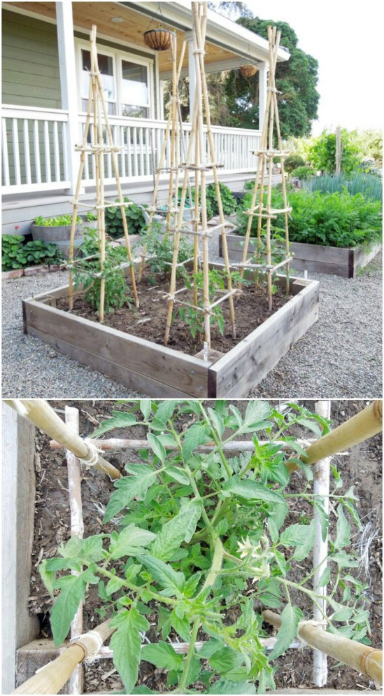 DIY Bamboo And Twine Towers
