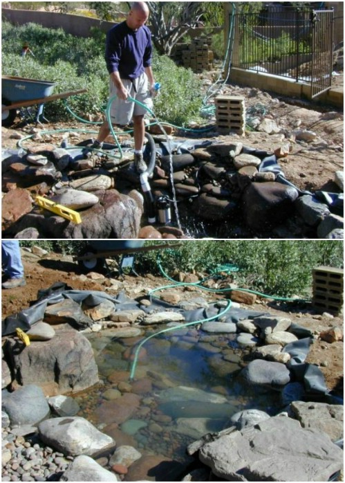 DIY Pond And Stream With Waterfall