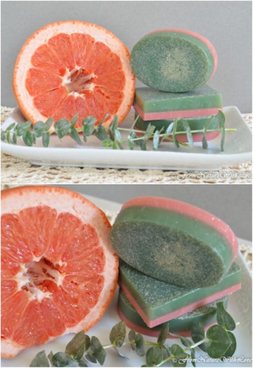 Fresh Smelling Grapefruit And Eucalyptus Soap