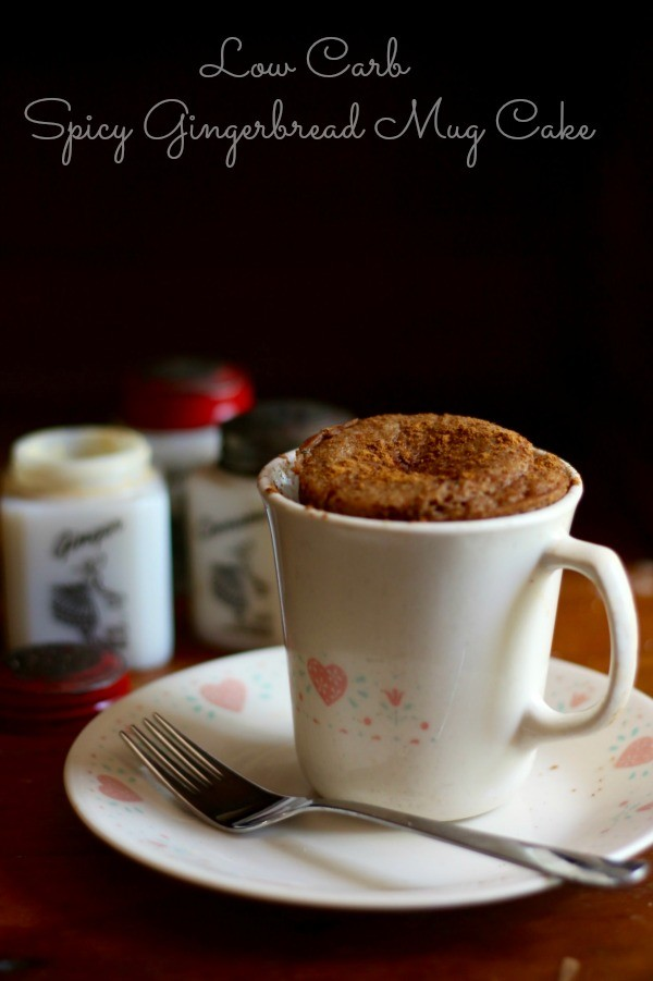 15 Easy and Quick Low Carb Mug Cakes - Mug Cakes, Mug Cake Recipes, Low Carb Mug Cakes, keto recipes, keto Mug cakes, Keto Cookies