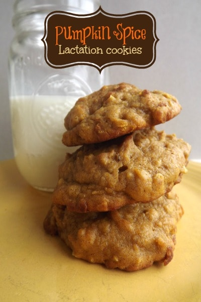 15 Yummy Lactation Cookie Recipes for Breastfeeding Moms (Part 1) - Lactation Cookie Recipes for Breastfeeding Moms, Lactation Cookie Recipes, Lactation Cookie, Cookie Recipes