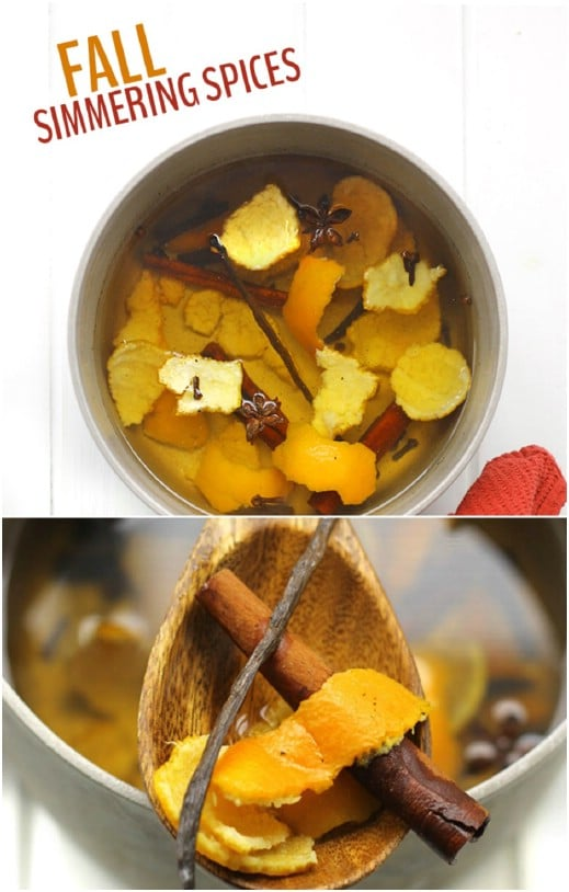 Fall Simmering Spices Potpourri