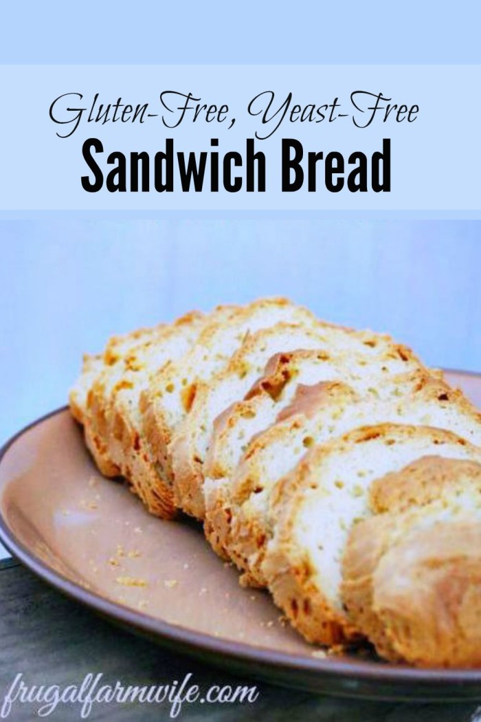 Gluten-free Yeast-free Sandwich Bread | 25+ Quick Bread Recipes (No Yeast Required)