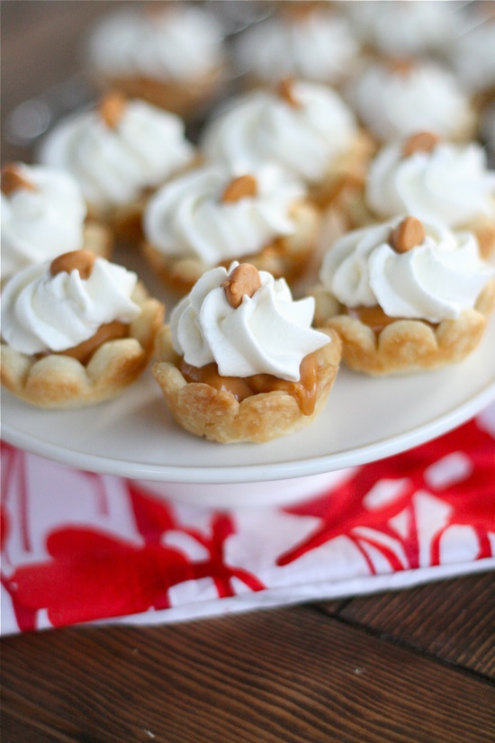 13 Tasty and Easy Bite Size Dessert Recipes and Ideas