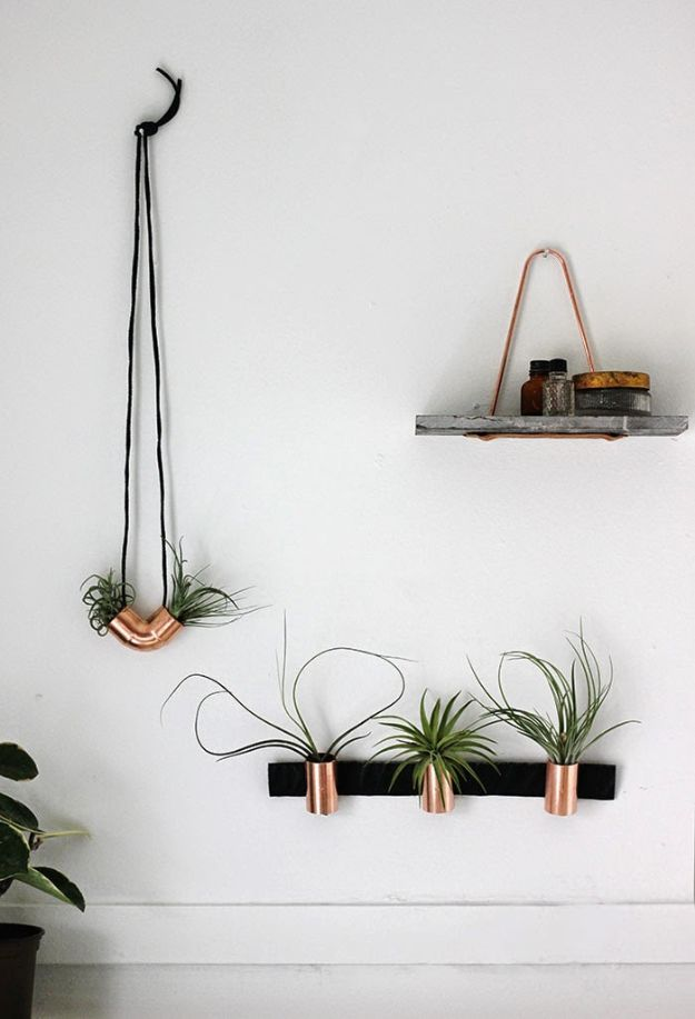 Cheap Wall Decor Ideas - Minimal Copper Airplant Holders - Cute and Easy Room Decor for Teens - Ideas for Teenager Bedroom Walls - Boys and Girls Room Canvas Wall Art and Decorating #teen #roomdecor #diydecor https://diyprojectsforteens.com/cheap-diy-wall-decor-ideas