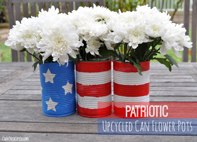 Patriotic Planters | +25 4th of July Party Ideas