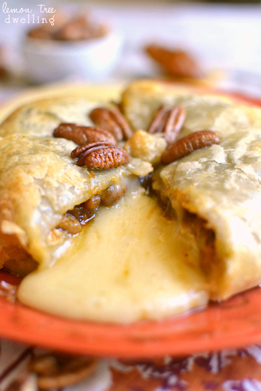 Pumpkin Pecan Baked Brie | 25+ Pecan Recipes