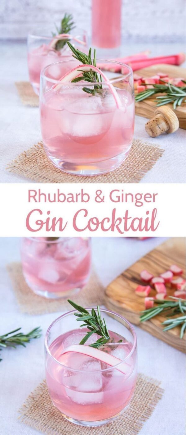 21 Best Gin Cocktails You Must Try - Winter Cocktails recipes, New Year Cocktails, Holiday Cocktails, Gin Cocktails, Gin Cocktail recipes, Cocktails