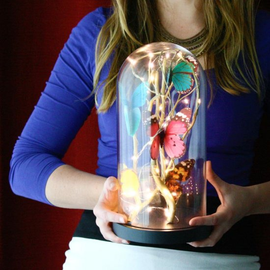 Magical Butterfly Cloche