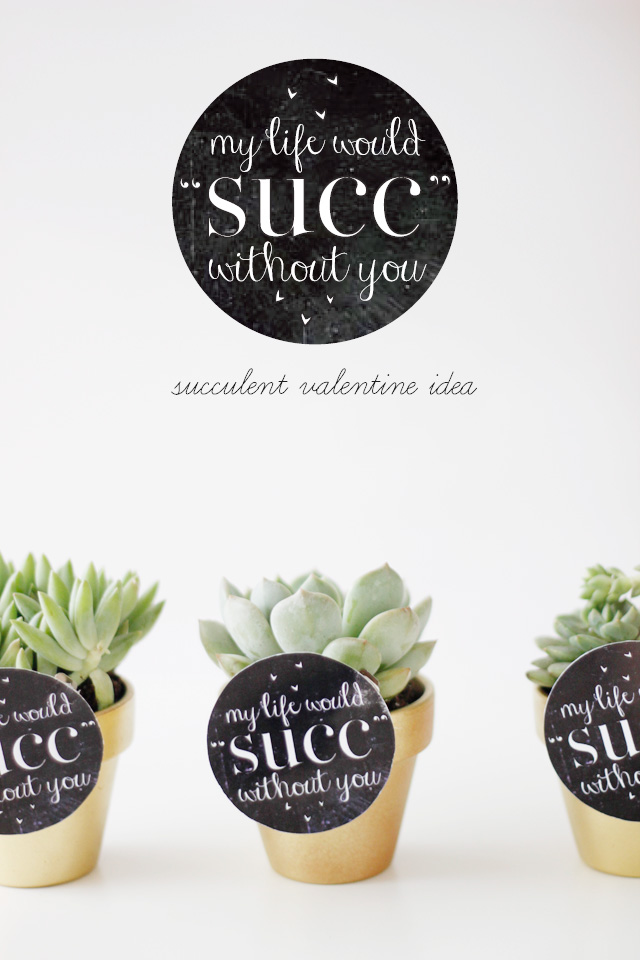 my life would suck without you (succulent valentines idea)