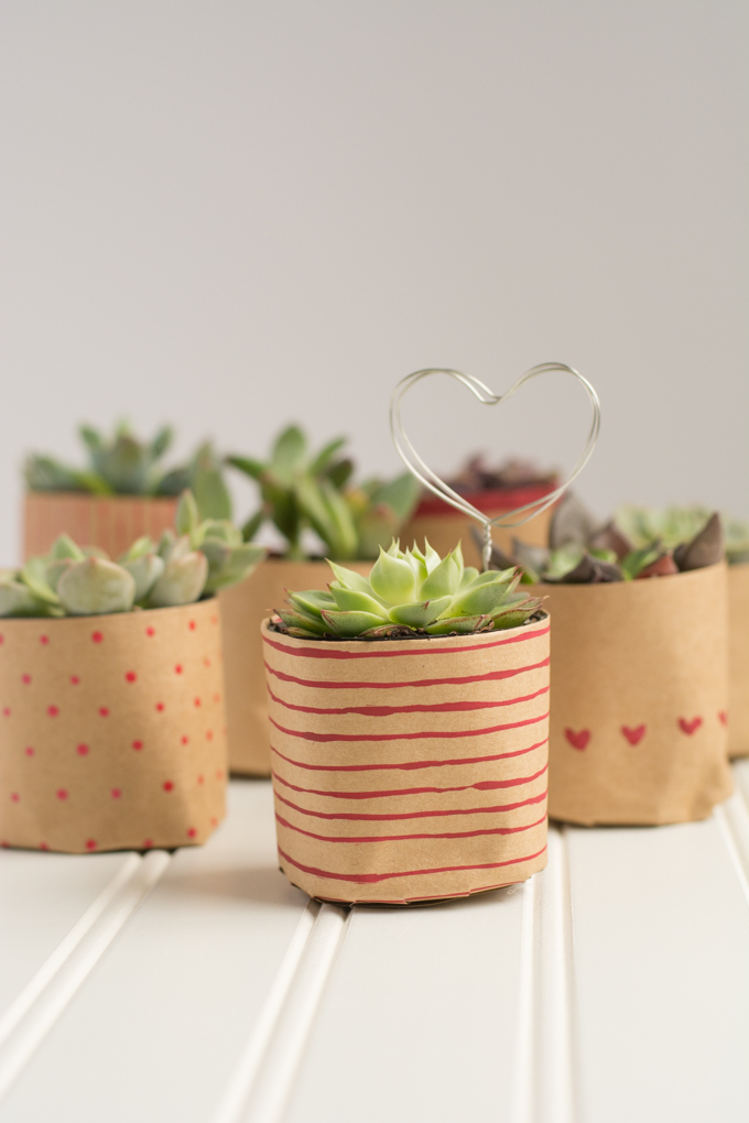 13 Lovely DIY Valentine's Day Succulents - Succulent, DIY Valentine's Day Succulents, diy Valentine's day gifts, diy Valentine's day, DIY Succulents