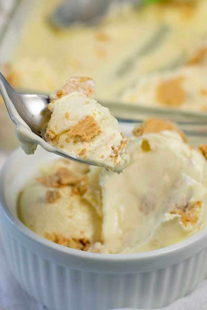 15 Homemade Ice Cream Recipes Made for Hot Summer Days (Part 1)