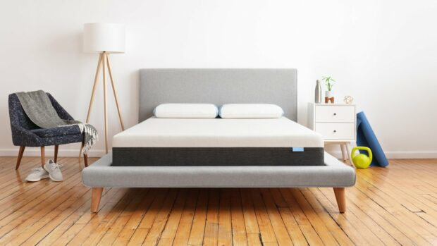 Mattress Shopping? Let's Talk About the Difference Between Latex and Memory Foam - shopping, memory foam, mattress, latex