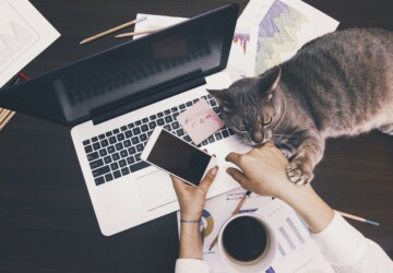 How to Make WFH a Little Less WTF - work from home, water, life style, Home office, home