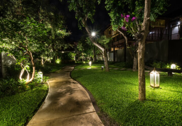 How To Use Landscape Lighting As Part Of Your Outdoor Aesthetic - uplighting, outdoor, mirrir lighting, lighting, landscape, downlighting, aesthetic