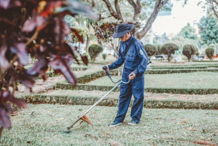 5 THINGS TO ASK BEFORE HIRING A LANDSCAPING CONTRACTOR - service, maintenance, lanscape, contractor, cnsultation