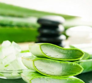 Make Aloe Vera Your Best Ally If You Have Oily Skin - style motivation, skin types, skin, oily skin, healthy skin, beauty, aloe vera for oily skin, aloe vera