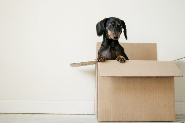 6 Handy Packing and Unpacking Tips for a Stress-Free Moving Day - unpacking, stress free, packing, moving