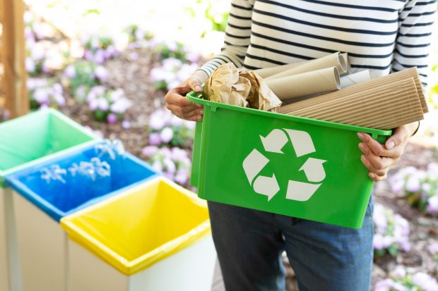 Creating A Greener Home: 3 Eco-Friendly Practices To Start Today - recycle, green home