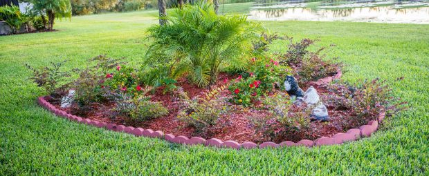7 Ways To Make Your Home And Yard Look Better - interior design, home, backyard