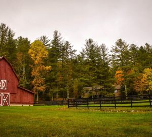 Building a barn for sick or injured horses