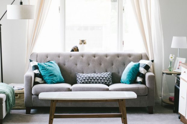 5 Interior Design Trends That Are Here to Stay - trends, interior design, Indoor Plants, home design