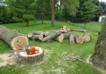 Explore All Types of Landscaping & Gardening Services - outdoors, landscape, home, garden, design