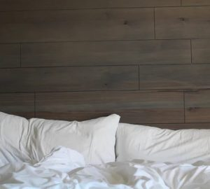 How to Get Rid of Bed Bugs - clean, bug, bed bugs, bed